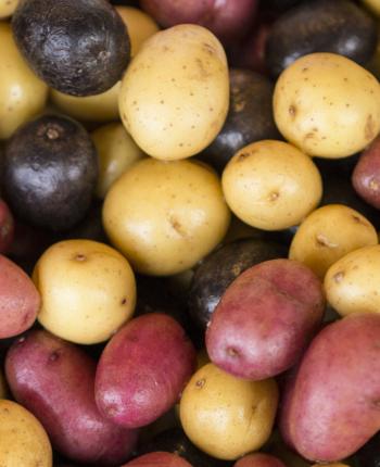 Potatoes, Recipes, Shepherd's Pie